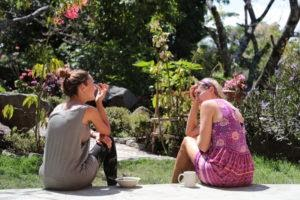 Two women sitting in a garden talking