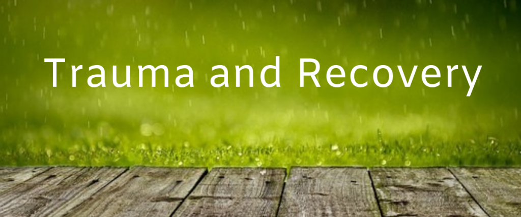 wooden planks in front of grass which is blurred due to rain with the text trauma and recovery.